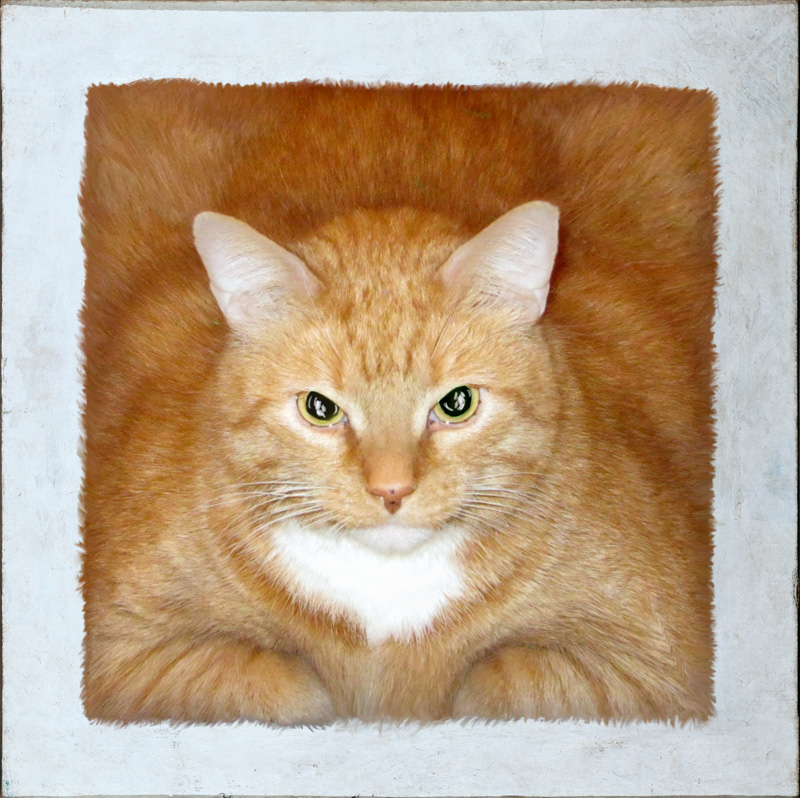 malevich red square cat sm Коты в искусстве
